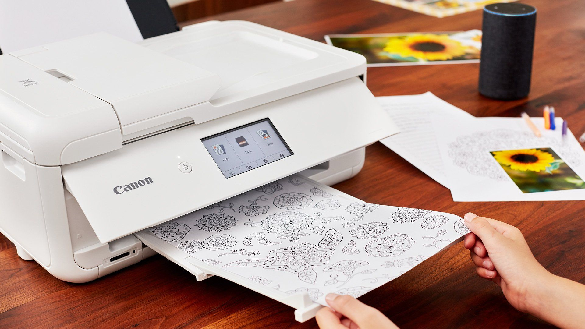 A sheet of colouring in images comes out of a white Canon PIXMA printer.